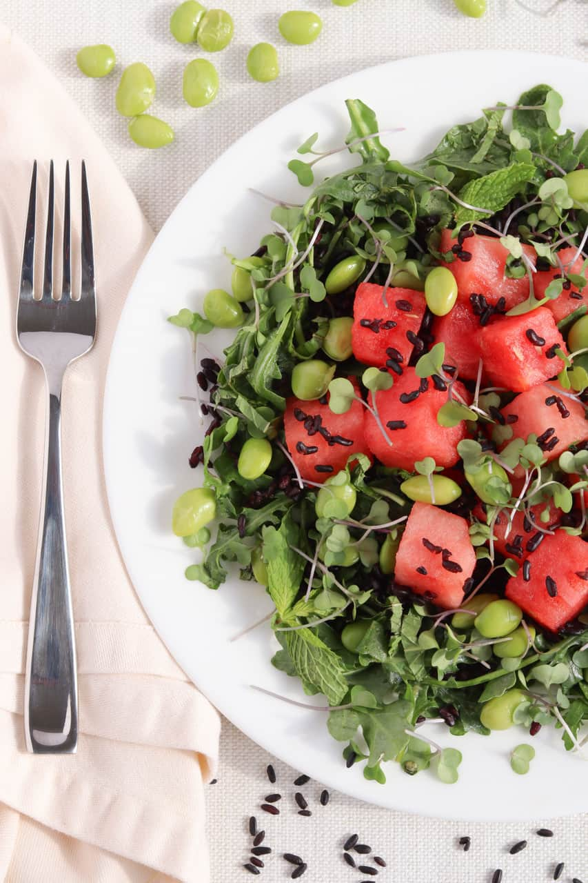 40 delicious & healthy vegan salad recipes picture of watermelon rice salad for recipe roundup