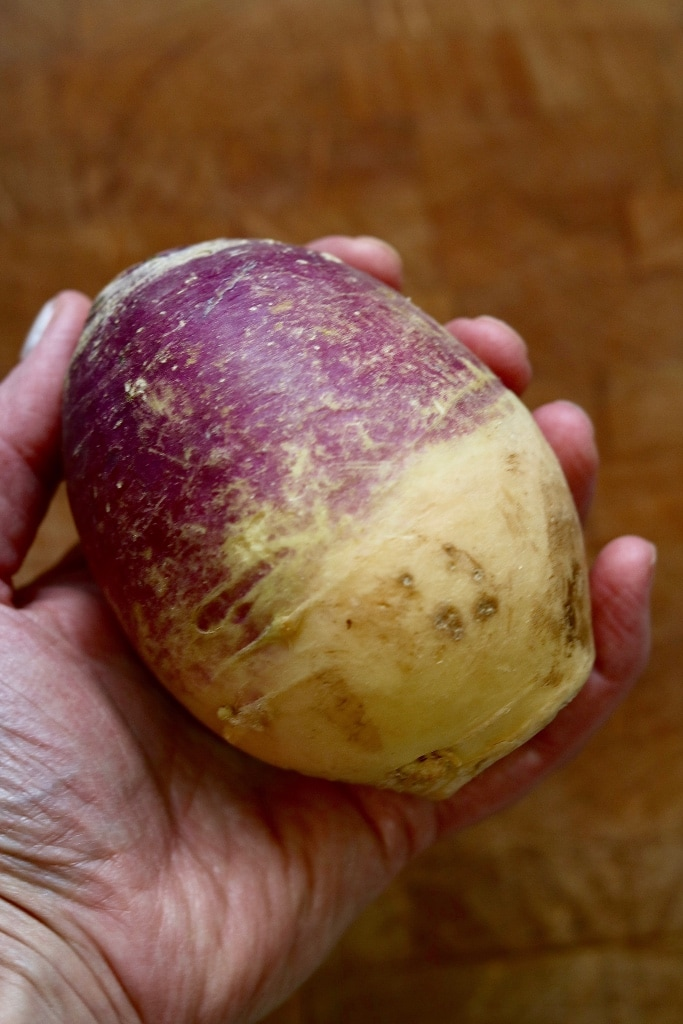 holding a whole rutabaga for hearty vegan stew