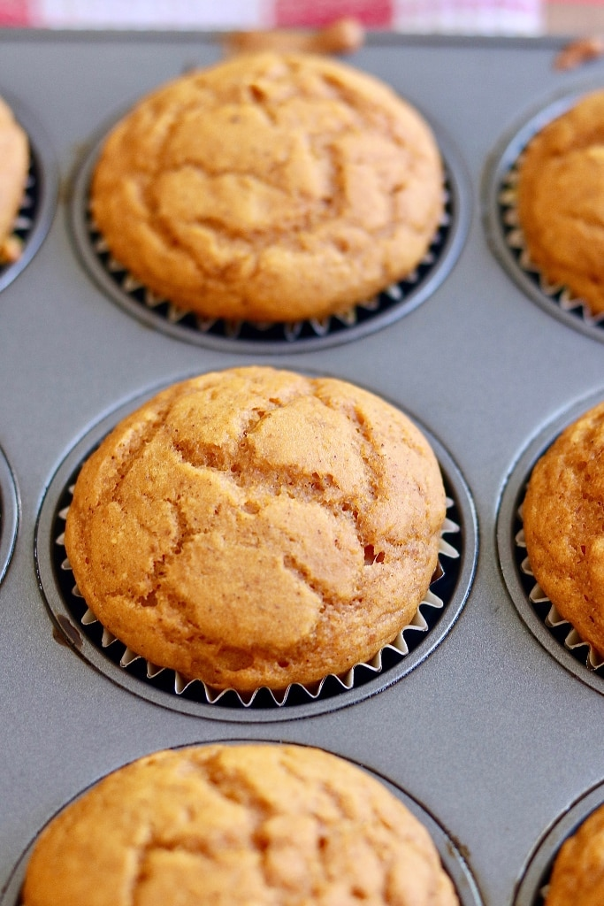 pumpkin cupcakes in muffin tins