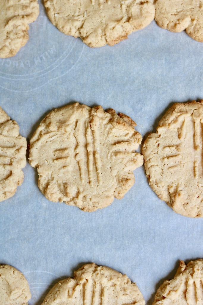 baked peanut butter cookies on a baking sheet