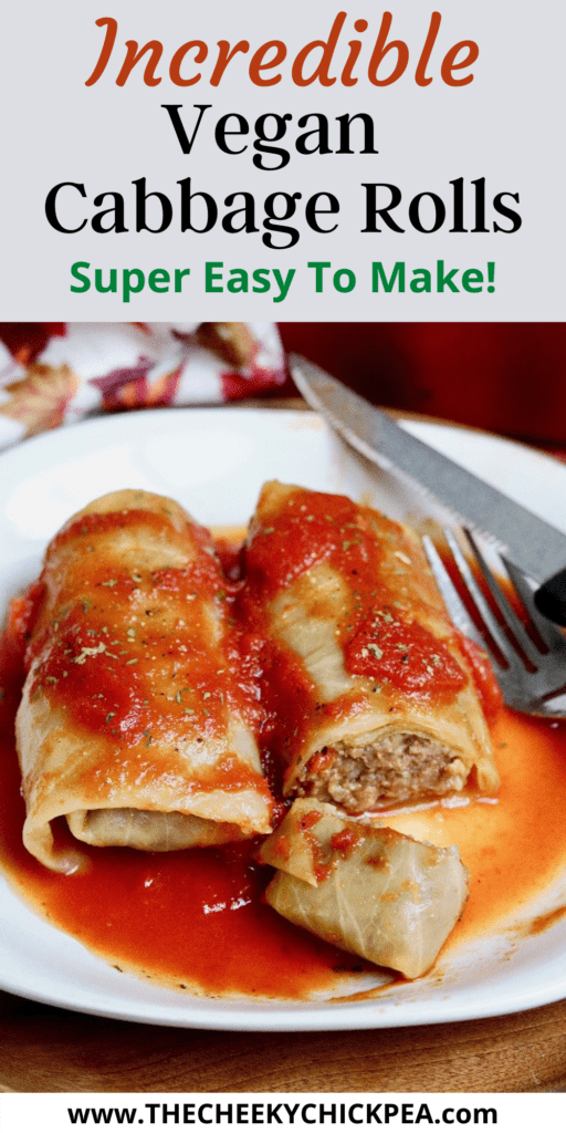 two cabbage rolls on a white plate